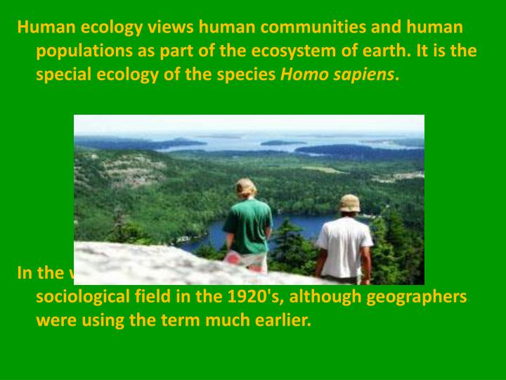 human ecology in sociology