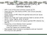 human papillomavirus hpv genital warts