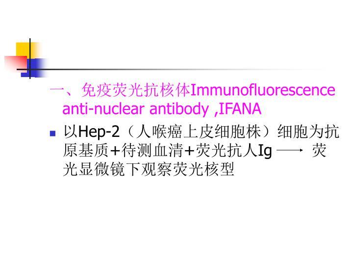 一、免疫荧光抗核体