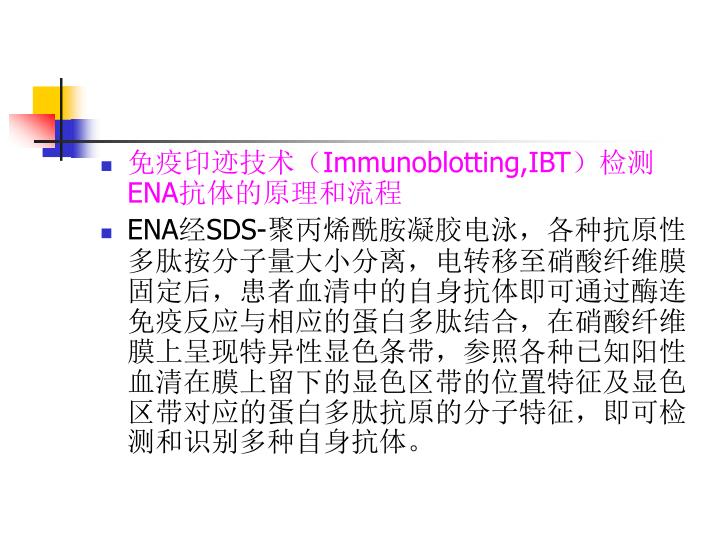 免疫印迹技术(