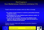 pilot projects in euro mediterranean electronic commerce 1 3