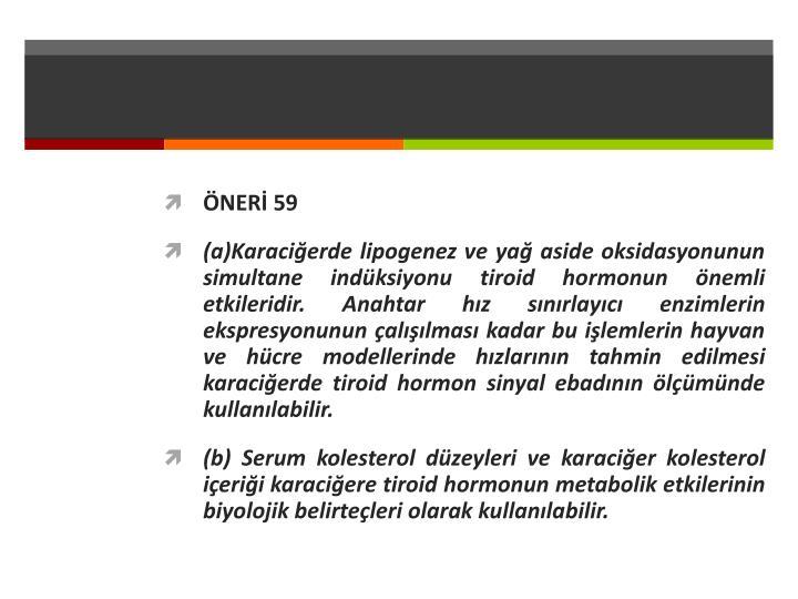 ÖNERİ 59