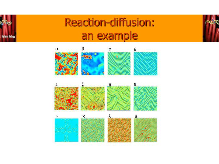 Reaction-diffusion: