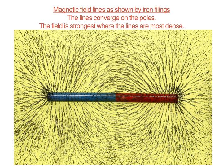 Magnetic field lines as shown by iron filings
