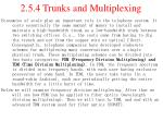 2 5 4 trunks and multiplexing