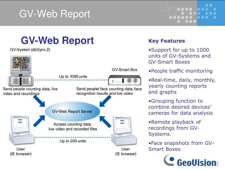 GV-Web Report