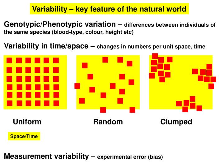 Variability – key feature of the natural world