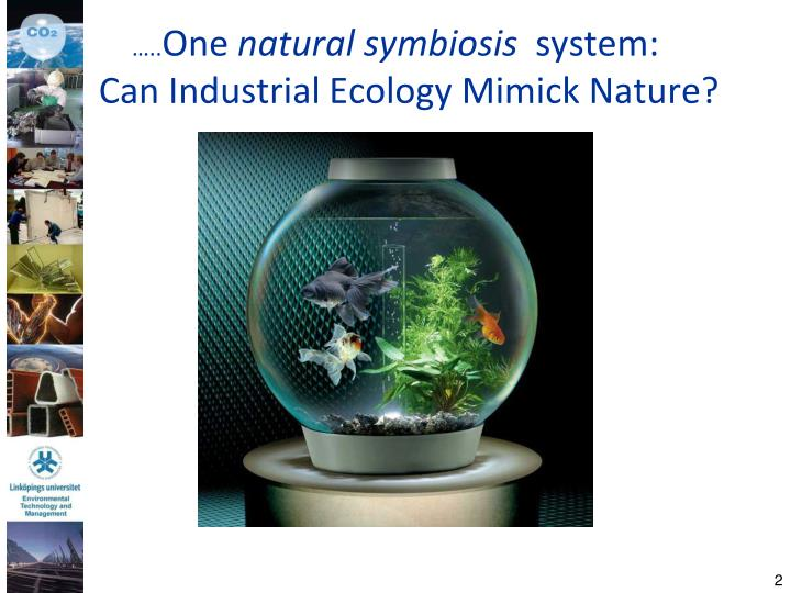 One natural symbiosis system can industrial ecology mimick nature