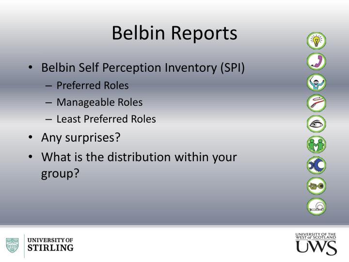 Belbin Reports