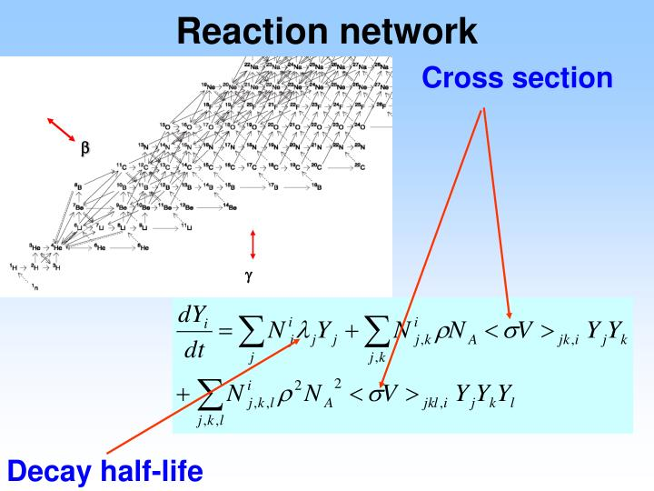 Reaction network