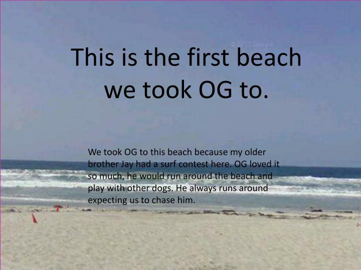 This is the first beach we took OG to.