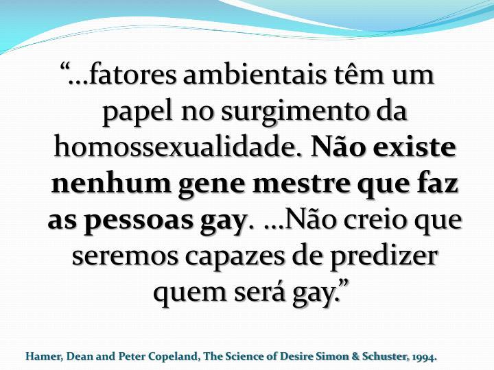 """""""…fatores ambientais têm um papel no surgimento da homossexualidade."""