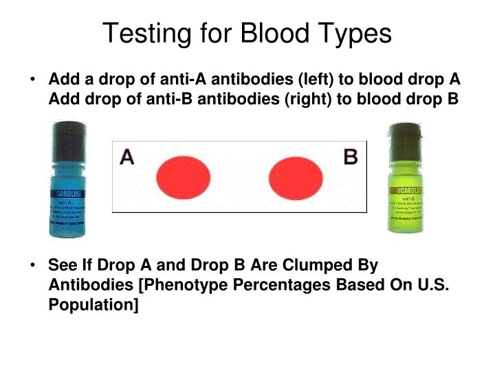 Testing for Blood Types