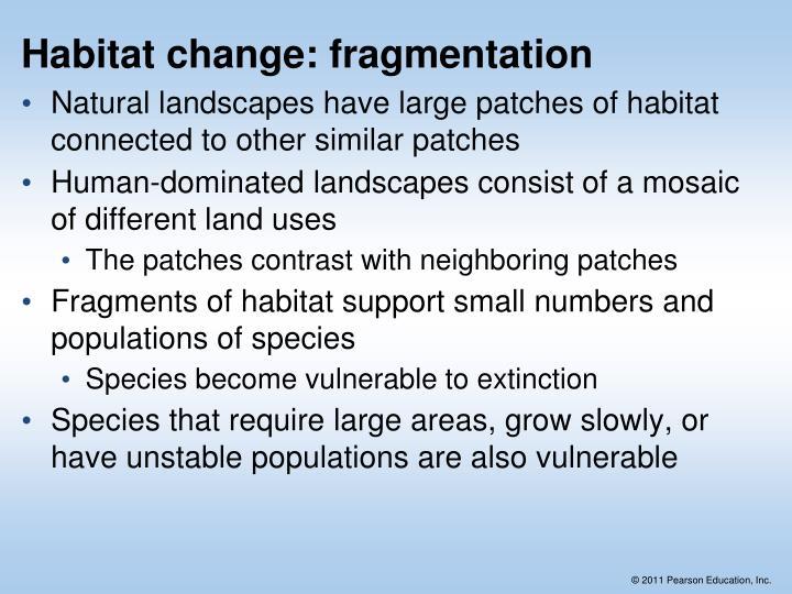 Habitat change: fragmentation