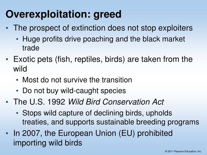 Overexploitation: greed