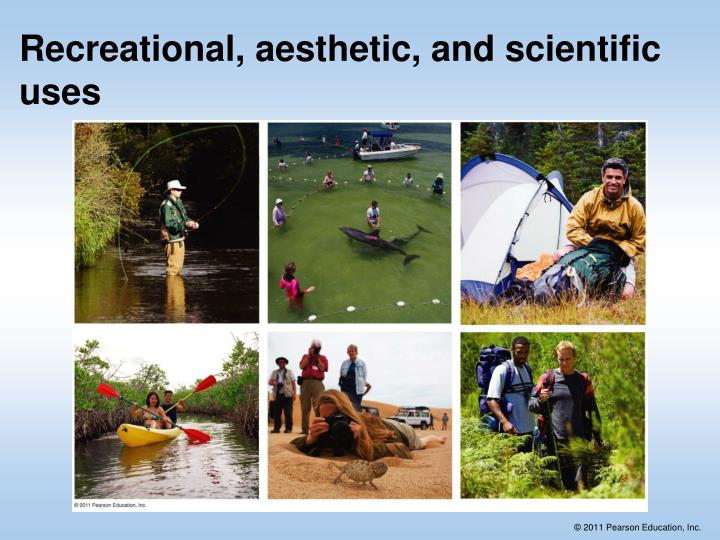 Recreational, aesthetic, and scientific uses