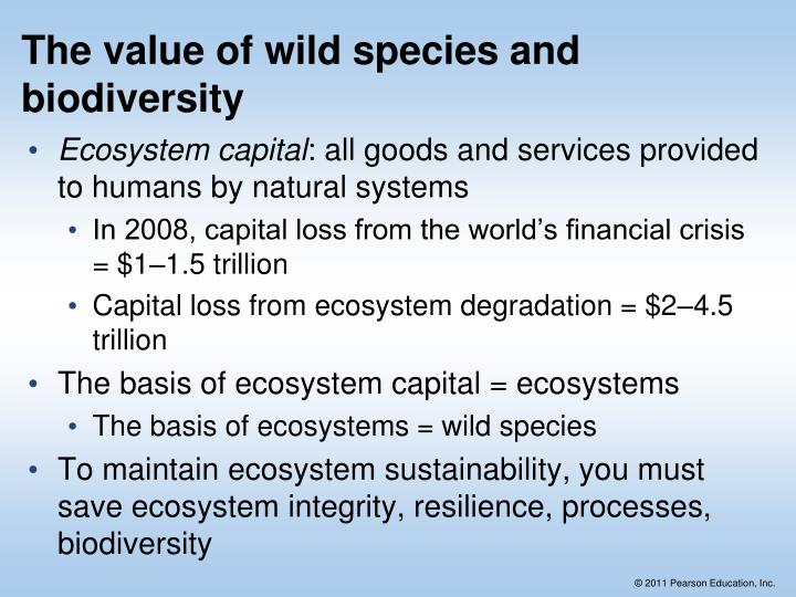 The value of wild species and biodiversity