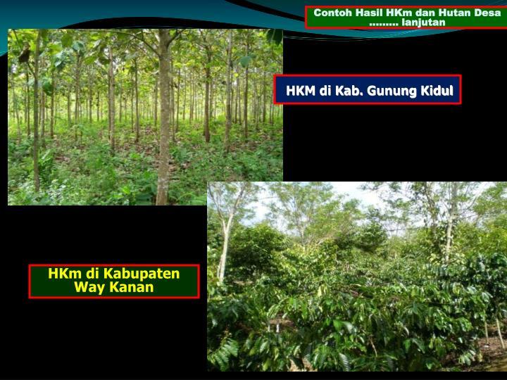 Contoh Hasil HKm dan Hutan Desa ......... lanjutan