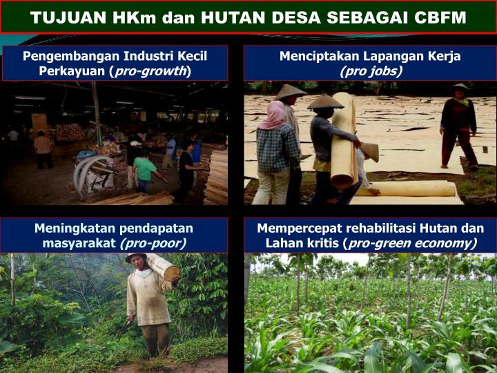TUJUAN HKm dan HUTAN DESA SEBAGAI CBFM