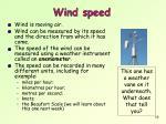 wind speed1