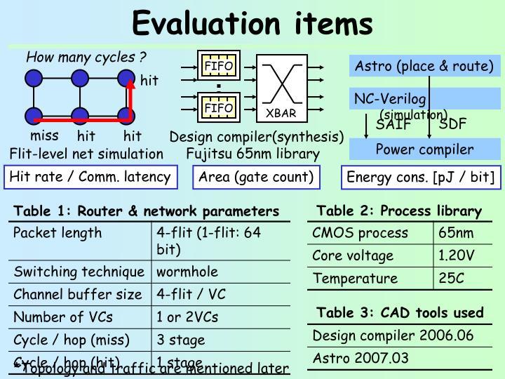 Evaluation items