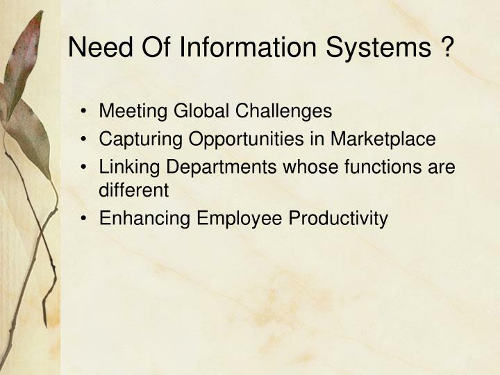 Need Of Information Systems ?