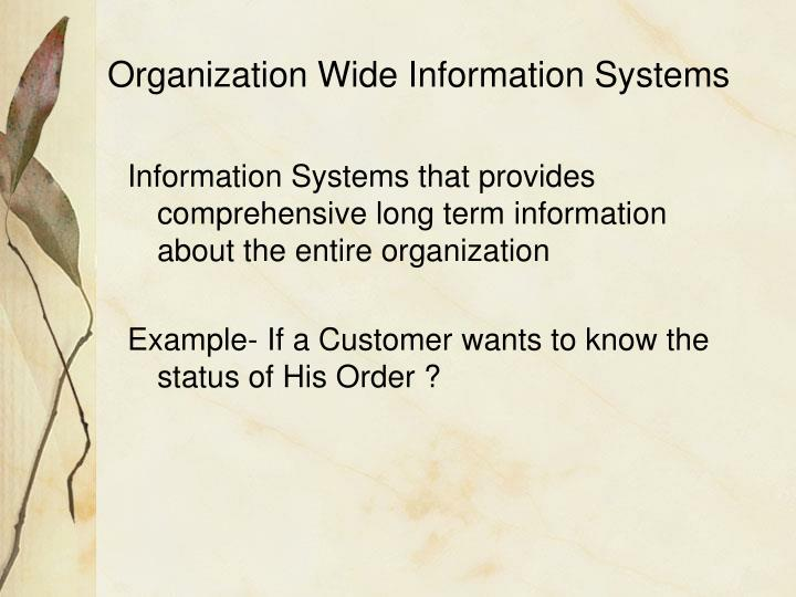 Organization Wide Information Systems