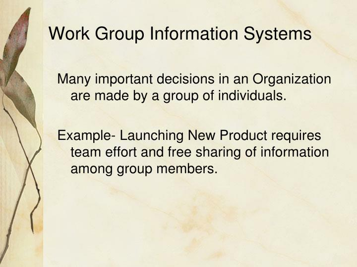 Work Group Information Systems