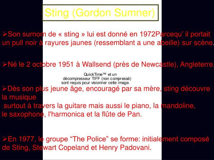 Sting (Gordon Sumner)