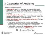 3 categories of auditing