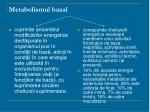 metabolismul bazal1