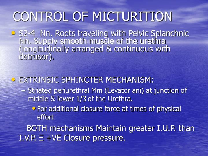 CONTROL OF MICTURITION