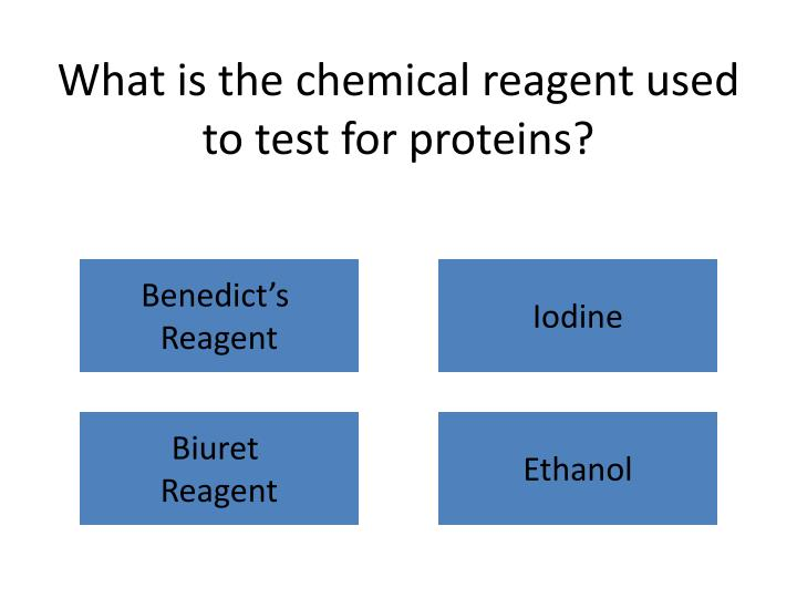 What is the chemical reagent used to test for proteins?