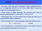 13 5 the simple pendulum2