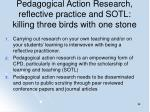 pedagogical action research reflective practice and sotl killing three birds with one stone
