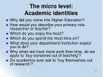 the micro level academic identities