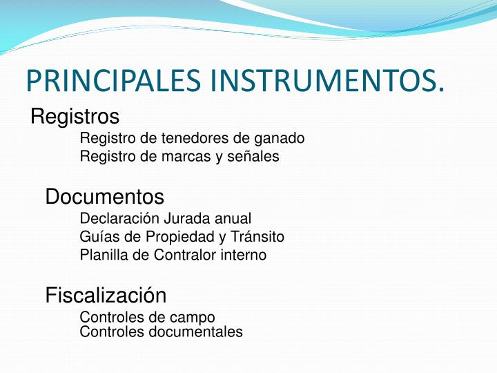 PRINCIPALES INSTRUMENTOS.