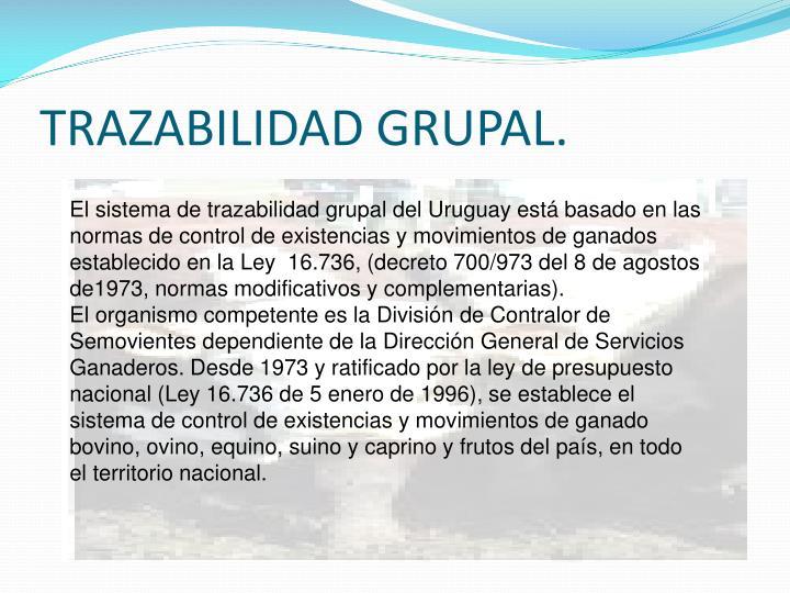 TRAZABILIDAD GRUPAL.