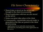 file server characteristics
