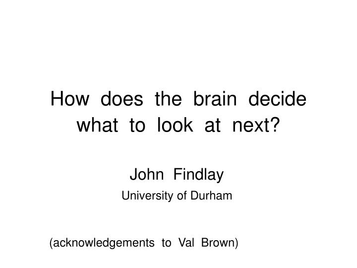 how does the brain decide what to look at next n.