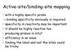 active site binding site mapping