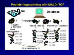 peptide fingerprinting with maldi tof