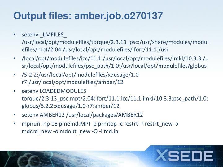 Output files: amber.job.o270137