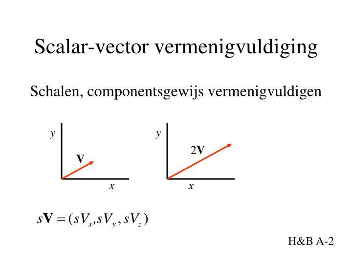 Scalar-vector vermenigvuldiging