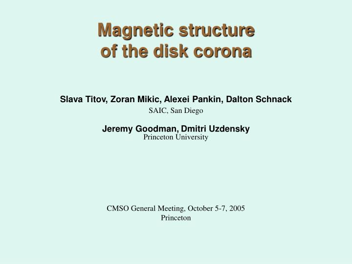 magnetic structure of the disk corona n.