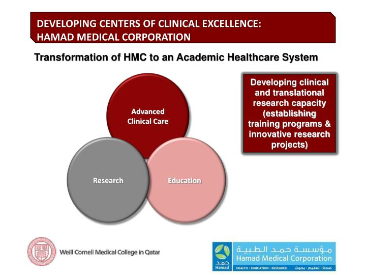 Developing clinical and translational research capacity (establishing training programs & innovative research projects)