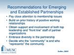 recommendations for emerging and established partnerships