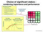 choice of significant stakes combining importance and performance