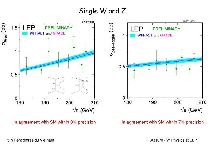 Single W and Z