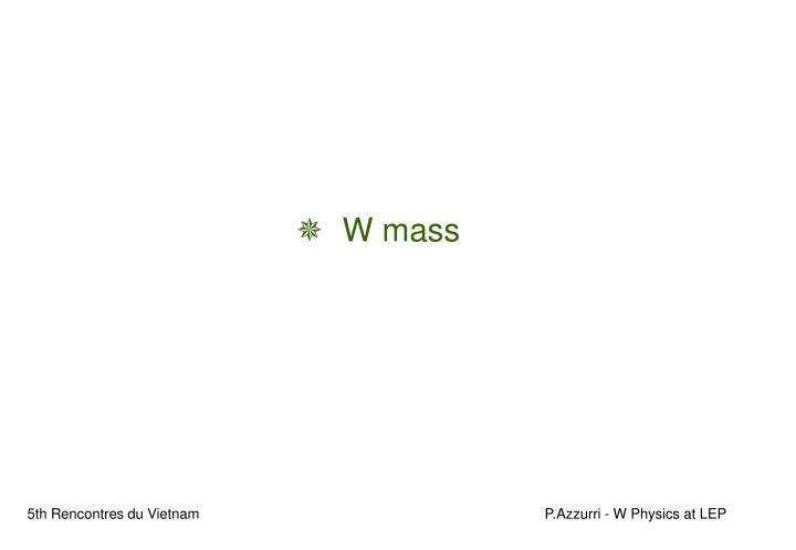 W mass